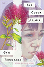 THE COLOR OF AIR by Gail Tsukiyama $26.99 hardcover 9780062976192
