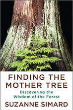 FINDING THE MOTHER TREE by Suzanne Simard  $28.95 hardcover 9780525656098