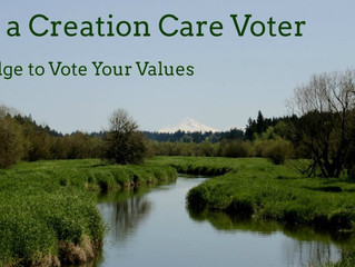Sign the UCC's Creation Care Voter Pledge