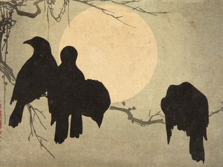 Five Crows in January
