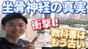 【ハワイ解剖実習】坐骨神経の真実!
