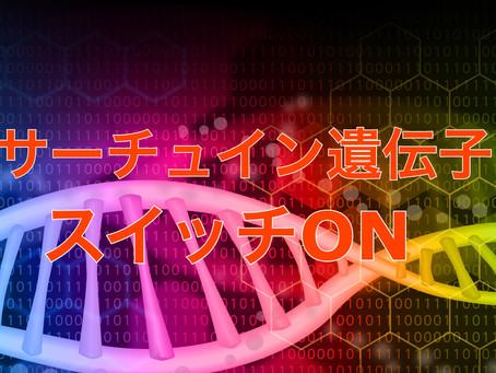 【ファスティング 2日目】サーチュイン遺伝子 ON