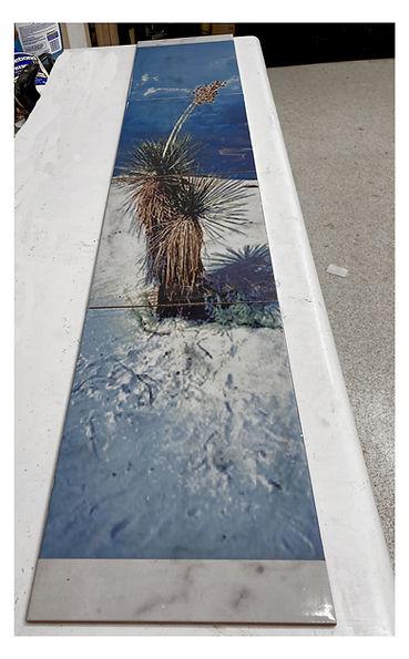 long tiled yucca for webpic.jpg