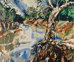 Darling River near Wilcannia