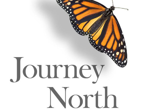JourneyNorth: Discover the World Through Citizen Science