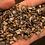 Thumbnail: Shark Tooth Prospecting Kit