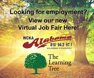 Virtual Job Fair copy.png