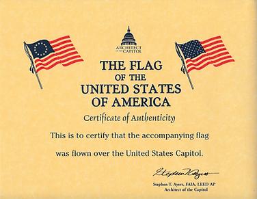 Certificate flag US Capitol grab.png