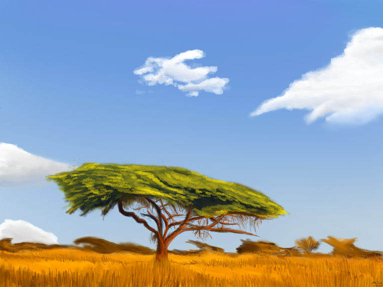 savana landscape