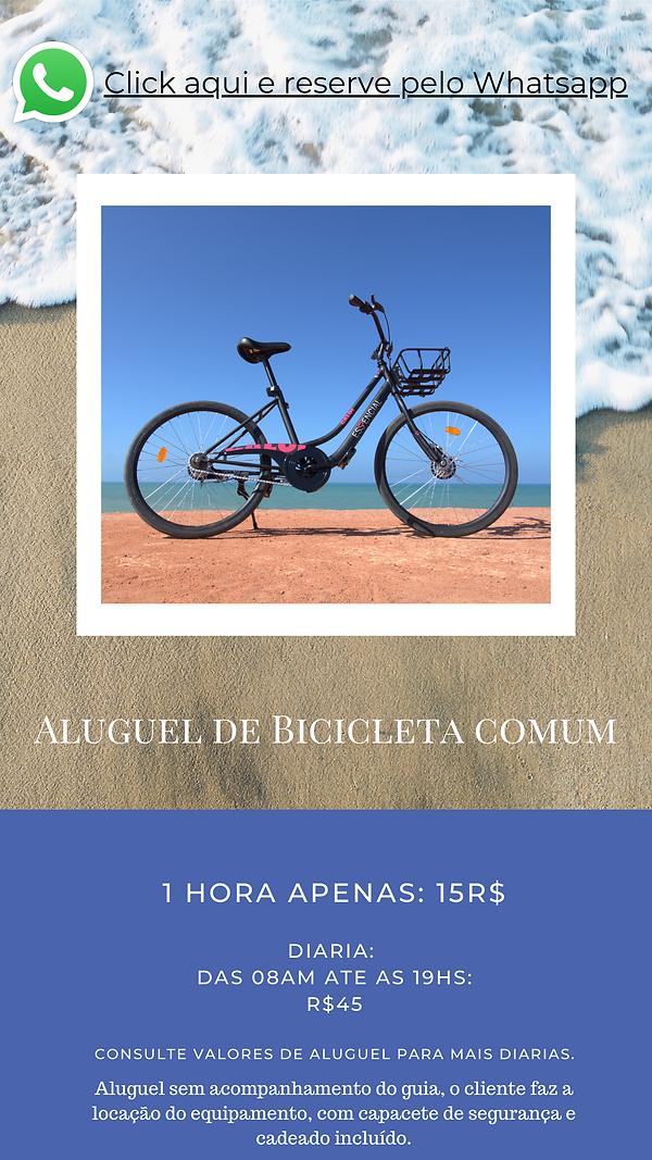 @pipabikes Folder 25.11.20 - PDF 2020 (4