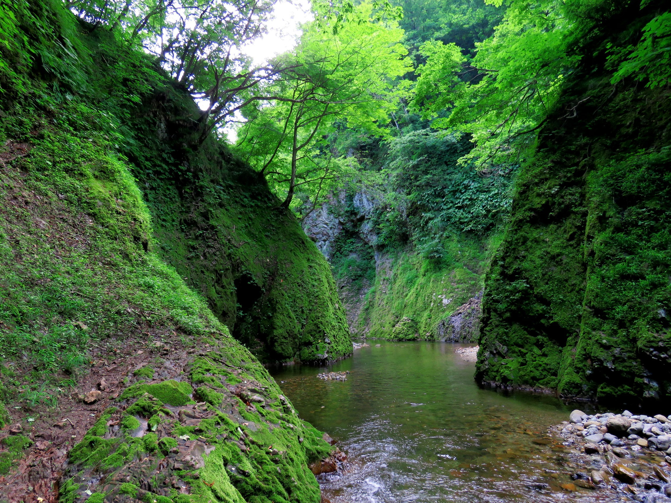 matto_river2