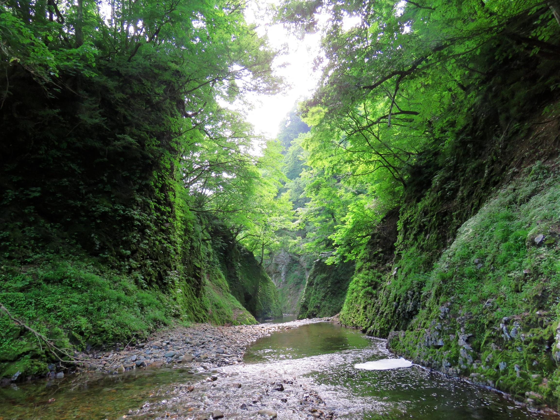 matto_river7