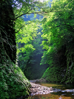 matto_river13