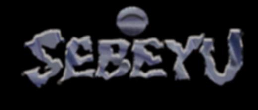 SEBEYU-LOGO-FINAL-chrome-object.png