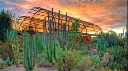 desert-botanical-garden-2