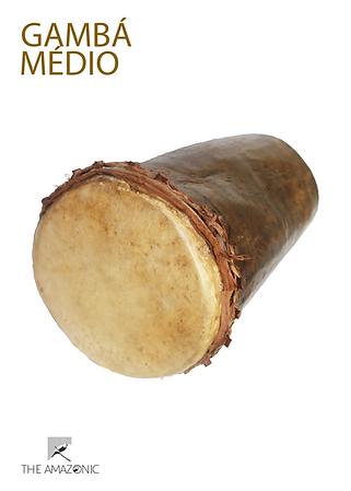Gamba Medio.png