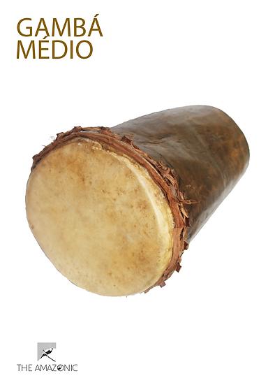 Gambá Médio
