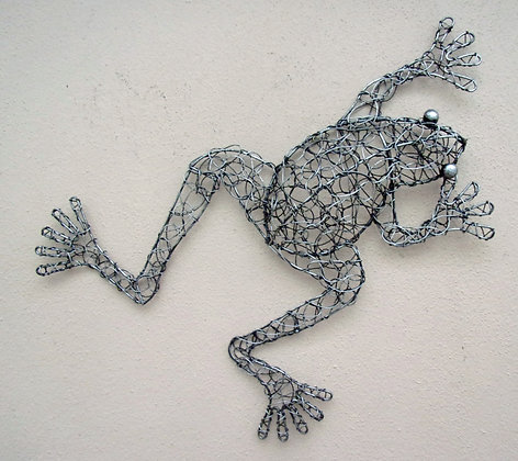 Twisted Wire 3D Wall Frog