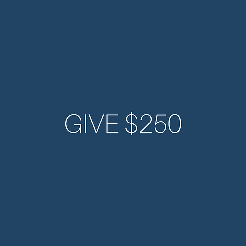 Donations can be added to cart in $250 increments