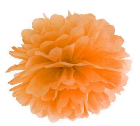 Pompom di carta Arancio