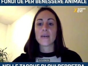 SCANDALOSO USO DEI FONDI UE: ALTRO CHE BENESSERE ANIMALE!