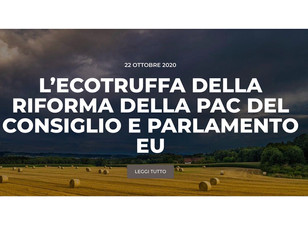 LE ACCUSE DI FAKE NEWS SULLA PAC LE RIMANDO AL MITTENTE.