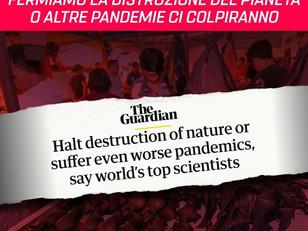 🔴 FERMIAMO LA DISTRUZIONE DELL'AMBIENTE O ALTRE PANDEMIE CI COLPIRANNO!