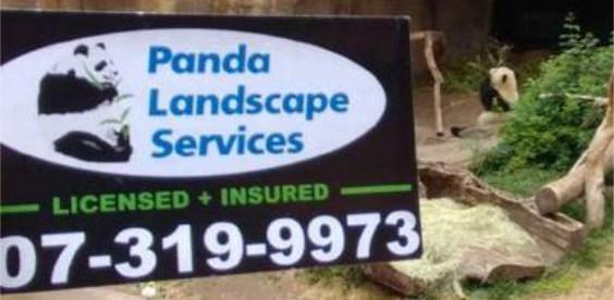 PANDA SANDI FOR SITE.jpg