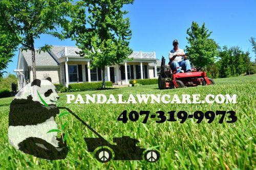 NEW AD SITE AND NUMBER PANDA MOWER.jpg