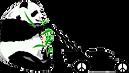 ORLANDO LAWN MOWING BY PANDA