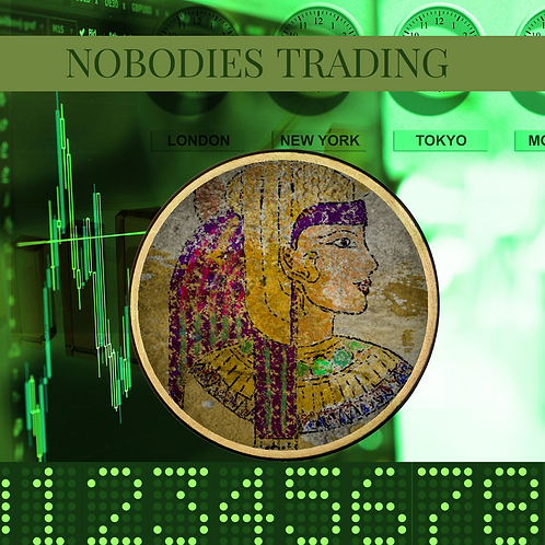 Nobodies Trading: Forex Week Course