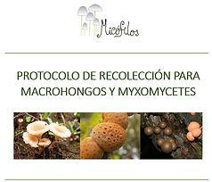 Protocolo_de_recolección_de_Macrohongos_
