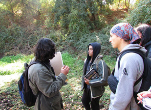Actividades micológicas realizadas en la Región de Valparaíso