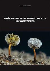 Guía_Myxomycetes.jpg