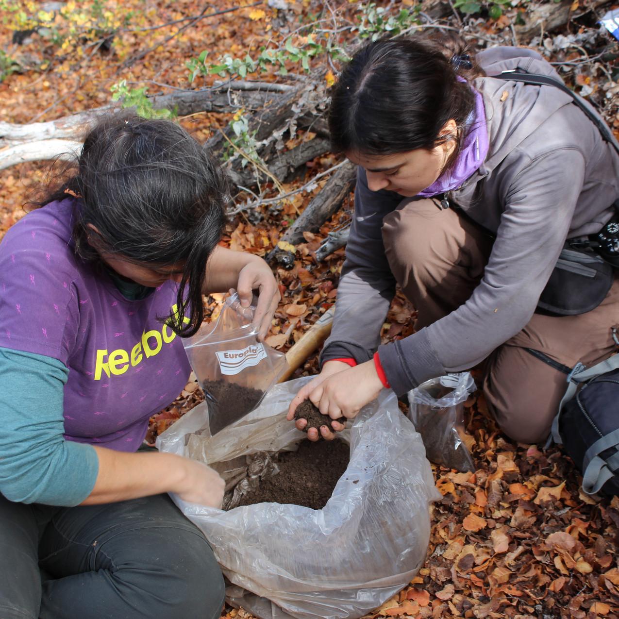 Liliana y M. José colectando suelo