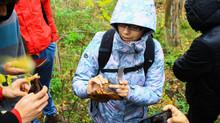 Recolección sustentable de hongos comestibles en Sta. Bárbara
