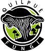 Quilpué fungi jpg.jpg