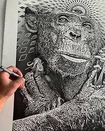 Stoned ape