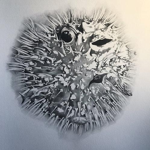 Giant Fugu