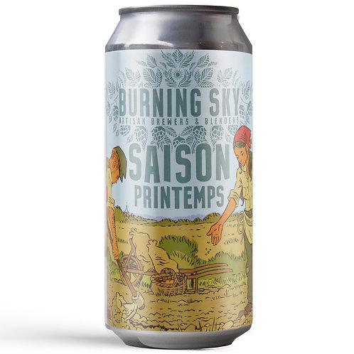 'Saison Printemps' - Burning Sky Brewery - Saison - 4.2%