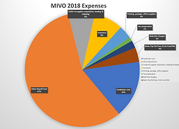 MIVO 2018 Expenses.png