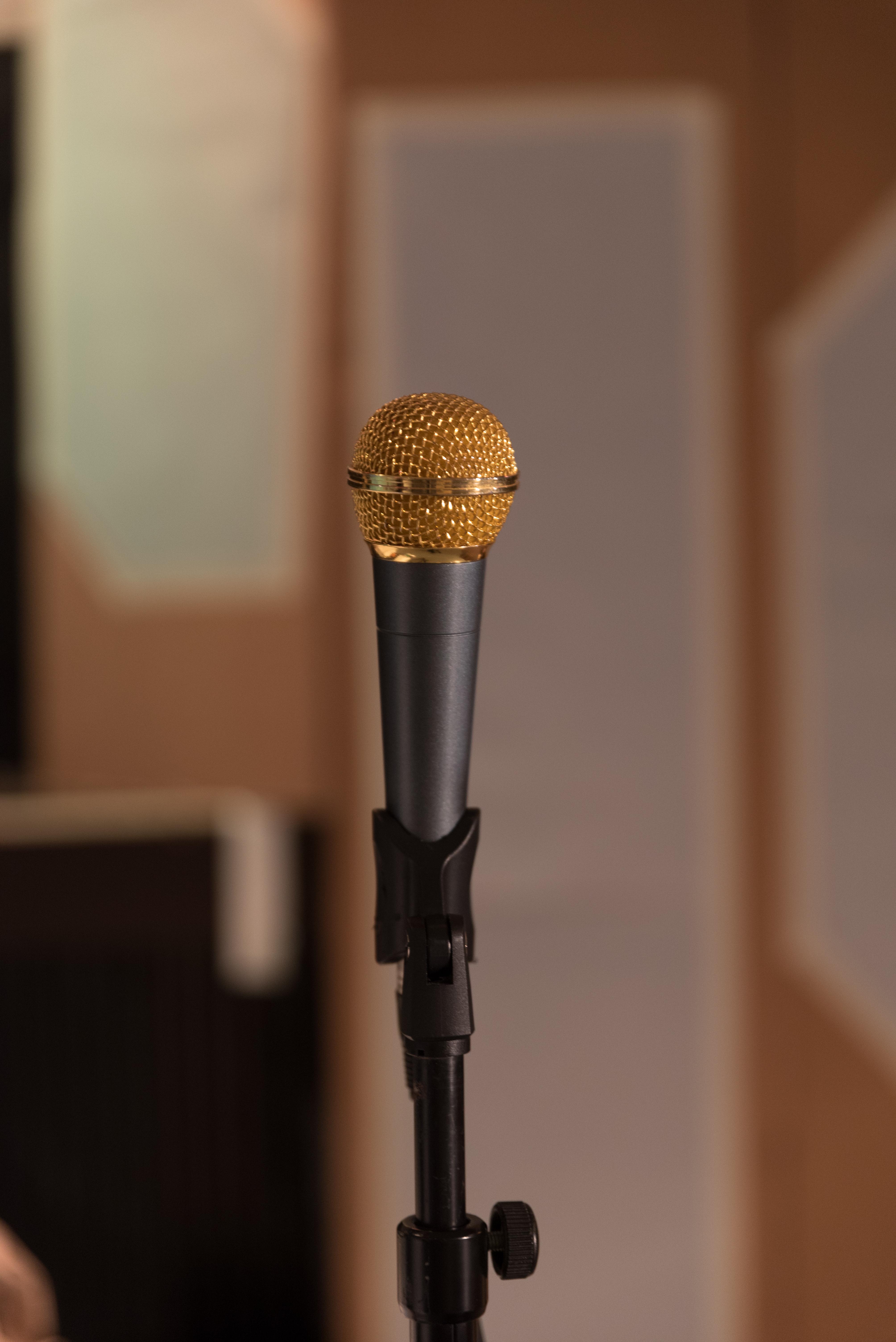 Das goldene Mikrophon