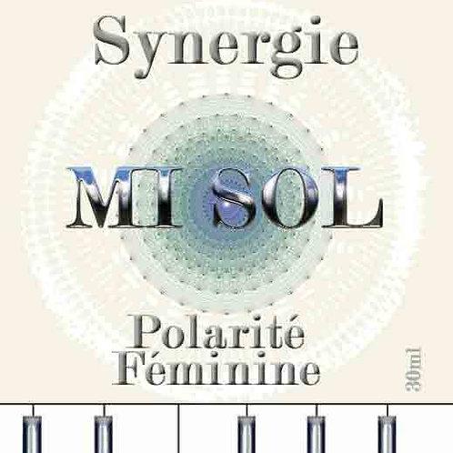 Synergi MI-SOL