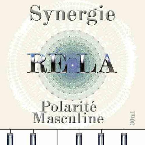 Synergie RÉ-LA