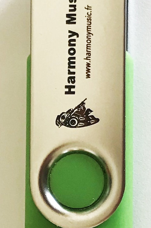 Clé USB Verte