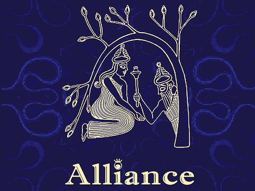 CD ALLIANCE