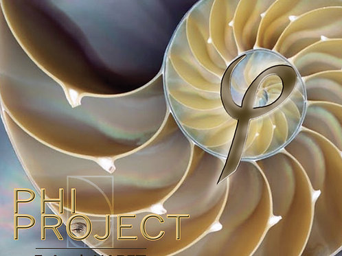 PHI-PROJECT