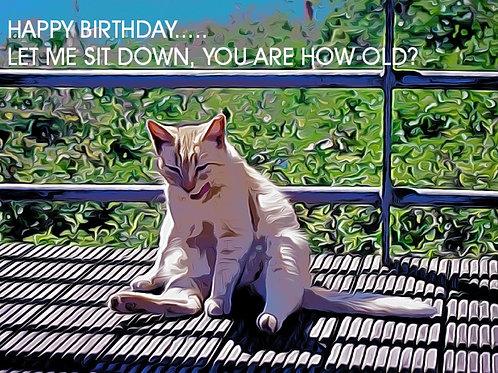 EU Post Big Ginge Birthday Card