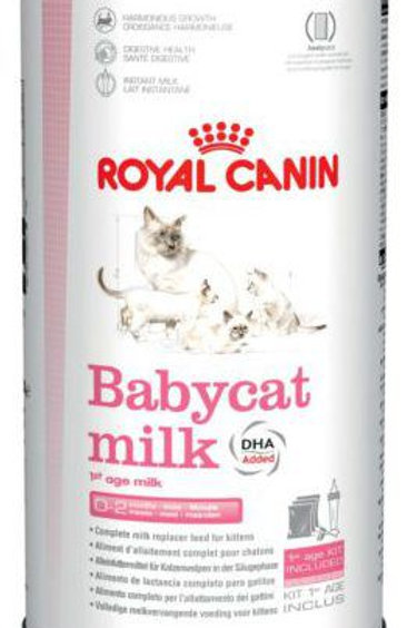Kitten Milk Powder Donation