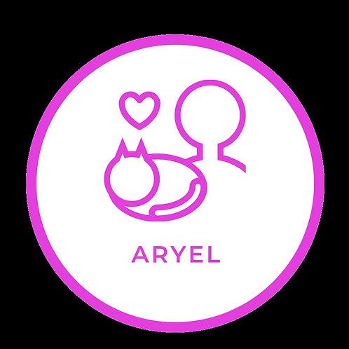 Jaula de internment sponsor na Aryel Associação